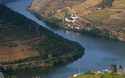 Porto – podróż po winnicach