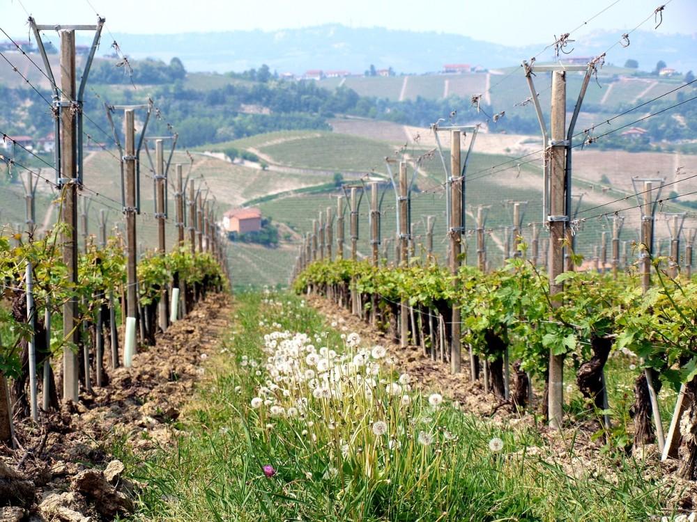 Piemont, Włochy