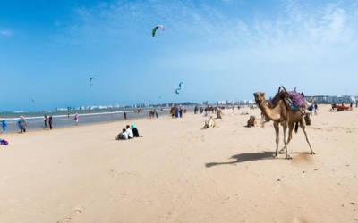 Essaouira z lotu ptaka – Wycieczka kitesurfing'owa