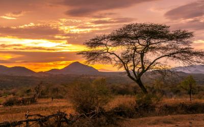 Etiopia – trasa historyczna i dolina Omo