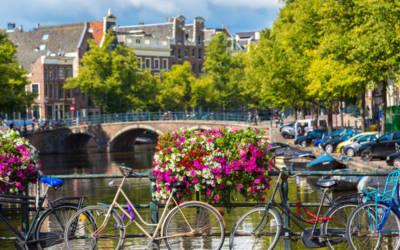 Majówka – Niderlandzkie Smaki