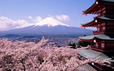 Niezwykła podróż do Japonii