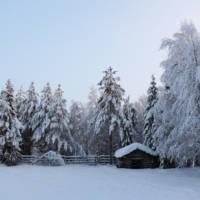 Laponia - prawdziwa zima