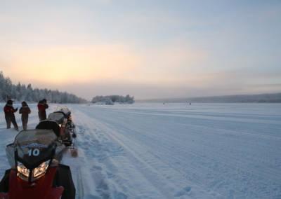 Laponia śnieżne safari