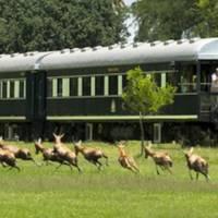Pociągi Rovos Rail